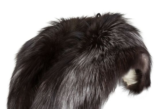 Large Detachable Silver Fox Fur Collar
